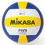 FIVB official ball, synthetic leather