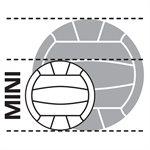 Mini replica of NVL game volleyball